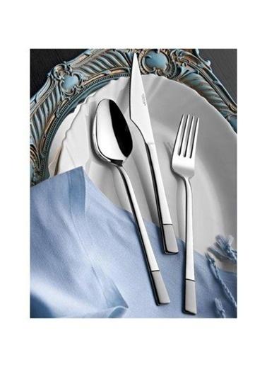 Yetkin Çelik Saten Alya Yemek Kaşık 12 Adet Renkli